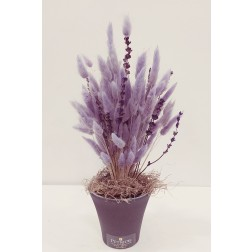 LAVENDER BUNNY TAILS